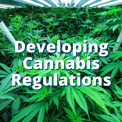 Developing Cannabis Regulations